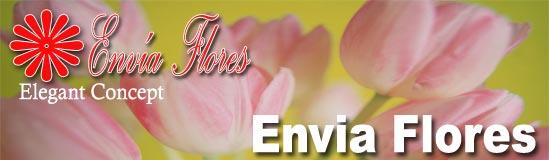Florerías Envia Flores
